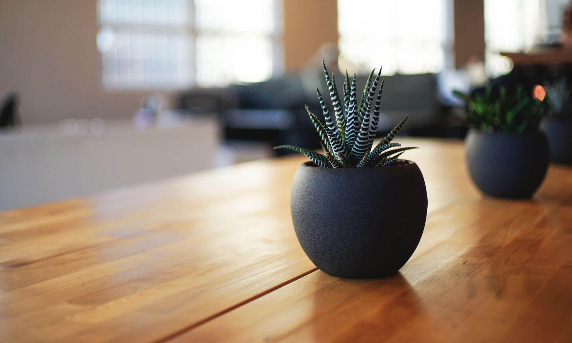 豊中市の理容室【IDEAL】 エステサロン【mieux mieux】ブログ